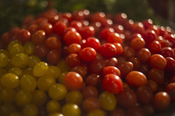 """In this Thursday, Jan. 4, 2018 photo, small yellow and red """"drop tomatoes"""" are spawning new recipes at a restaurant in Tel Aviv, Israel. The """"drop tomato"""" is about the size of a blueberry and Israel's Kedma company in the southern Arava desert says it is the smallest one ever developed in Israel, perhaps even in the world. (AP Photo/Ariel Schalit)"""