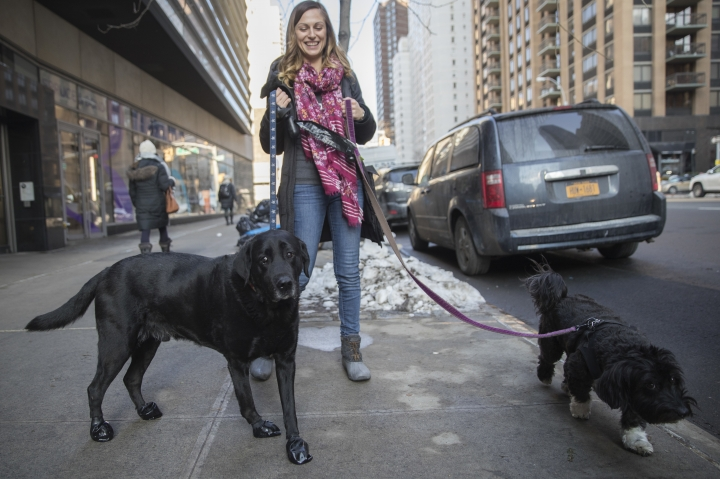 In this Tuesday, Jan. 9, 2018, photo, Tanya Lim, owner of Play Pals NYC, a dog-walking and cat-sitting service, walks Cannon, left, and Gigi, on New York's Upper West Side. When the temperature in New York plunged because of severe winter weather, so did revenue at Play Pals NYC. Many of Lim's clients were among the people who decided to work from home because of the cold, so they didn't need her services. (AP Photo/Mary Altaffer)