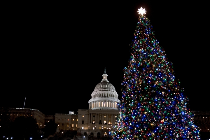FILE- In this Dec. 6, 2017, file photo, the Capitol Christmas Tree, which came from a northwestern Montana forest, is lit on the West Lawn of the U.S. Capitol in Washington. Some Montana companies hope to keep the fame of the spruce tree that served as the U.S. Capitol Christmas Tree alive by trucking the tree back home to Montana. Organizers hope it can be used to help rebuild a century-old chalet in Glacier National Park that was destroyed in a wildfire last summer. (AP Photo/Andrew Harnik, File)