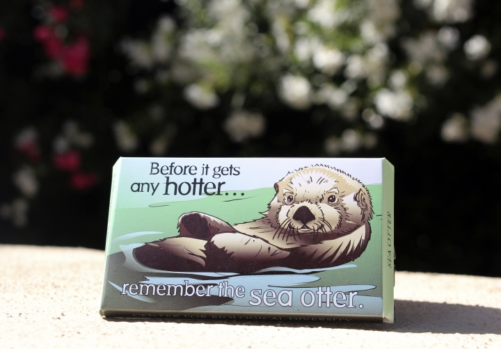 """This undated photo provided by the Center for Biological Diversity in Tucson, Ariz., shows a condom package designed by Lori Lieber from the center's """"Endangered Species Condoms"""" series, featuring rhyming maxims and Shawn DiCriscio's illustrations of animal species threatened by population growth. As part of the center's """"Pillow Talk"""" program, hundreds of the condoms will be distributed for free during evening Valentine's Day events for adults on Friday, Feb. 9, 2018, at the Carnegie Science Center in Pittsburgh and the San Diego Natural History Museum. (Center for Biological Diversity via AP)"""