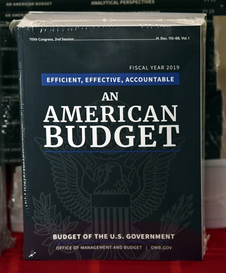 The President's FY19 Budget is on display after arriving on Capitol Hill in Washington, Monday, Feb. 12, 2018. (AP Photo/Susan Walsh)