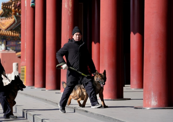 Head of canine patrol squad Chang Fumao patrols with a guard dog in the Forbidden City in central Beijing, China February 12, 2018. Picture taken February 12, 2018. REUTERS/Jason Lee