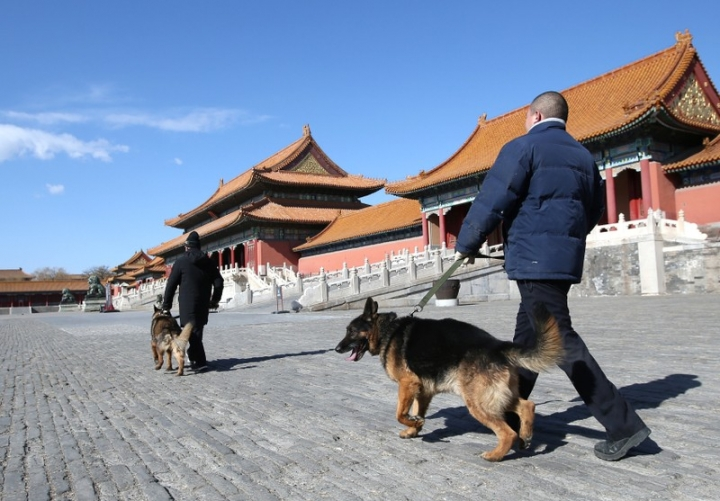 Security staff of canine patrol squad Zhang Yu (behind) and Chang Fumao patrol with guard dogs in front of the Hall of Supreme Harmony of the Forbidden City in central Beijing, China February 12, 2018. Picture taken February 12, 2018. REUTERS/Jason Lee