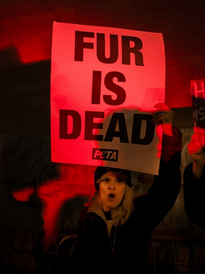 Animal right activists are lit by a flashing police light while they protest outside Marc Jacobs fashion show during Fashion Week in New York, Wednesday, Feb. 14, 2018. (AP Photo/Andres Kudacki)