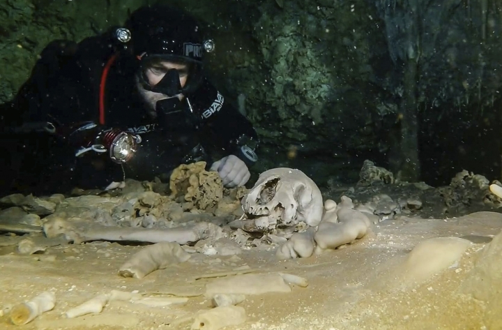 """This undated photo released by Mexico's National Anthropology and History Institute (INAH) shows a diver from the Great Mayan Aquifer project looking at human remains believed to be from the Pleistocene era, in the Sac Actun underwater cave system, where Mayan and Pleistocene bones and cultural artifacts have been found submerged, near Tulum, Mexico. Mexican experts said Monday, Feb. 19, 2018, that the recently mapped Sac Actun cave system """"is probably the most important underwater archaeological site in the world,"""" but is threatened by pollution. (Great Mayan Aquifer Project-INAH via AP)"""