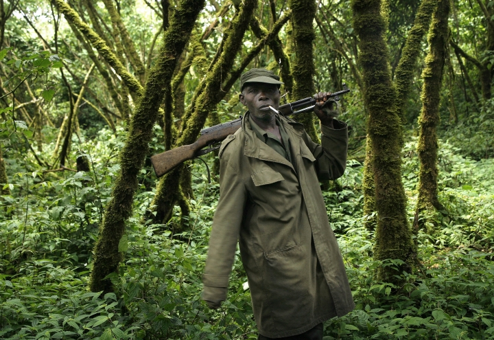 FILE - In this Tuesday, Nov. 25, 2008 file photo, a park ranger loyal to the CNDP escorts visitors through the Virunga National Park, near the Uganda border in eastern Congo. Authorities in Congo say five park rangers and a driver have been killed in an attack at the Virunga National Park. The park, which is home to critically endangered mountain gorillas, confirmed the ambush Monday, April 9, 2018 in a statement. While there was no immediately claim of responsibility, suspicion immediately fell on militia groups that are active in and around the famed park.(AP Photo/Jerome Delay, file)