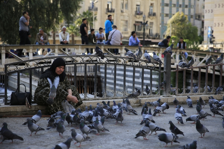 """A Syrian woman feeds pigeons at the Marjeh Square in Damascus, Syria, Sunday, April 15, 2018. Syria's President Bashar Assad spoke Sunday to a group of visiting Russian politicians saying that Western airstrikes against his country was accompanied by a campaign of """"lies"""" and misinformation in the U.N. Security Council. (AP Photo/Hassan Ammar)"""