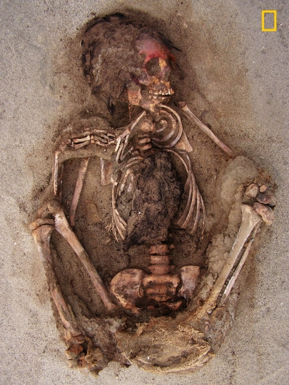 "This May 10, 2011 handout photo provided by National Geographic shows how the face of this child was painted with a red cinnabar-based pigment, at the Huanchaquito-Las Llamas site near Trujillo, Peru. Archaeologists hypothesize that the chest was cut open to remove the heart as part the sacrificial ceremony. ""Skeletal evidence clearly indicates that the children and camelids were sacrificed by cutting open the thoracic cavity,"" the researchers reported. (Gabriel Prieto/National Geographic via AP)"