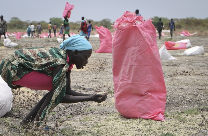 In this photo taken Wednesday, May 2, 2018, a woman scoops fallen sorghum grain off the ground after an aerial food drop by the World Food Program (WFP) in the town of Kandak, South Sudan. Five years into South Sudan's civil war more than seven million people are facing severe hunger without food aid, according to the latest analysis by the U.N. and the government. (AP Photo/Sam Mednick)
