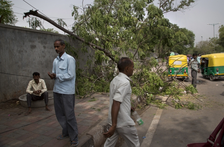 Commuters walk past an uprooted tree from yesterday's sudden storm in New Delhi, India, Monday, May 14, 2018. Powerful wind and rain storms have swept across northern India, with authorities saying dozens of people have been killed. Meteorological officials say winds reached up to 109 kilometers per hour (68 miles per hour) Sunday, blowing down trees and power lines and demolishing homes. (AP Photo/Manish Swarup)