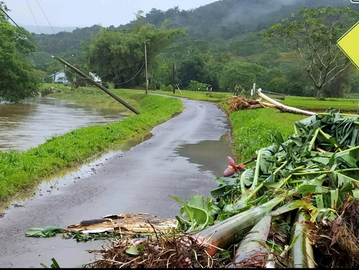 This April 16, 2018 photo provided by Lyndsey Haraguchi-Nakayama shows debris piled up after flooding in Hanalei, Kauai island, Hawaii. Farmers on Kauai say their state should brace for a shortage of its taro crop after record-breaking rains flooded their fields in April. The deluge hit the Kauai north shore community of Hanalei particularly hard. The region grows most of Hawaii's taro, a starchy root vegetable which is a staple of the traditional Hawaiian diet and a central part of Hawaiian culture. (AP Photo/Lyndsey Haraguchi-Nakayama)