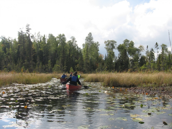 This Sept. 16, 2017 photo shows two canoes along a lily pad-lined bog in Minnesota's Boundary Waters Canoe Area Wilderness. The area protects more than 1,200 miles of canoe trails over lakes and rivers fringed by pine forests. (Giovanna Dell'Orto via AP)
