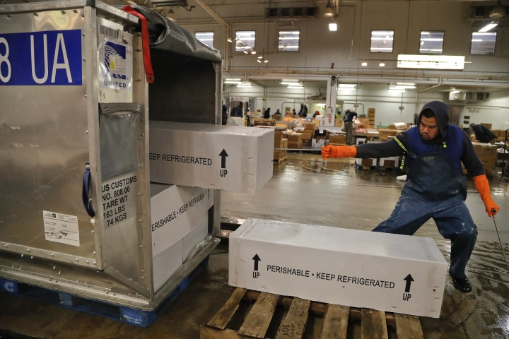 A fishmonger pulls boxes of whole tunas from an airline shipping container in New York on Monday, Dec. 18, 2017. More than 90 percent of all seafood that ends up on U.S. dinner tables is imported. (AP Photo/Julie Jacobson)