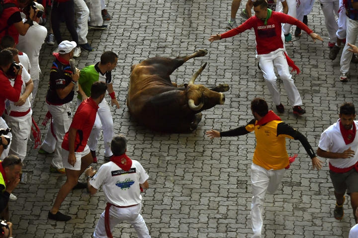 A Nunez del Cuvillo bull ranch falls as revellers run during 5th day of the running of the bulls at the San Fermin Festival in Pamplona, northern Spain, Wednesday, July 11, 2018. Revellers from around the world flock to Pamplona every year to take part in the eight days of the running of the bulls. (AP Photo/Alvaro Barrientos)