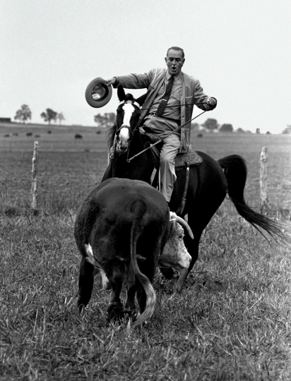 FILE - In the Nov. 4, 1964, file photo, President Lyndon Johnson proves he's a pretty good cowhand as he puts his horse, Lady B, through the paces with a Hereford yearling on his LBJ Ranch near Stonewall, Texas. The LBJ Ranch is where Johnson was born, lived and died. It influenced his views on poverty and inequality. It served as the Texas White House. (AP Photo/Bill Hudson, File)