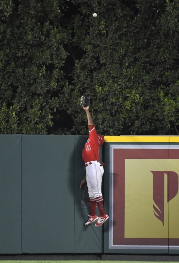 Los Angeles Angels center fielder Eric Young Jr. can't reach a solo home run by Oakland Athletics' Khris Davis during the first inning of a baseball game Friday, Aug. 10, 2018, in Anaheim, Calif. (AP Photo/Mark J. Terrill)