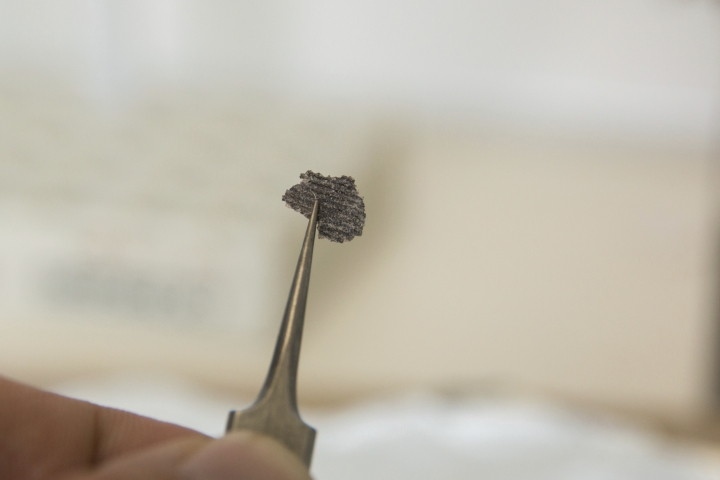 This undated photo provided by Ilya Bobrovskiy in September 2018 shows a fragment from a Dickinsonia fossil. The object is about 5 millimeters (1/5 of an inch) long. In a report released on Thursday, Sept. 20, 2018, scientists say they've confirmed that these fossils from more than 500 million years ago are traces of an animal, which makes that creature one of the earliest known. (Ilya Bobrovskiy/Australian National University via AP)
