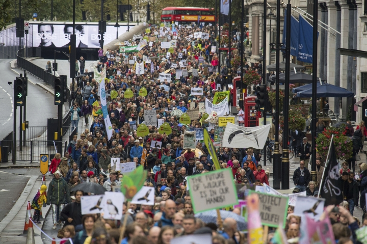 People march along Piccadilly roadway in central London, during the People's Walk for Wildlife, Saturday Sept. 22, 2018. Some hundreds of people gathered in London to demand better protection for the country's wildlife, with many carrying banners in support of various pro-nature and pro-animal causes. (Dominic Lipinski/PA via AP)