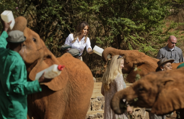 U.S. first lady Melania Trump feeds a baby elephant milk with a bottle, at the David Sheldrick Wildlife Trust elephant orphanage in Nairobi, Kenya Friday, Oct. 5, 2018. Mrs. Trump is visiting Africa on her first big solo international trip, aiming to make child well-being the focus of a five-day, four-country tour. (AP Photo/Ben Curtis, Pool)