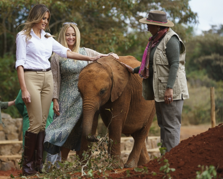 First lady Melania Trump with Margaret Kenyatta, Kenya's first lady, pets a baby elephant the at David Sheldrick Elephant & Rhino Orphanage at Nairobi National Park in Nairobi, Kenya, Friday, Oct. 5, 2018. Mrs. Trump is visiting Africa on her first big solo international trip, aiming to make child well-being the focus of a five-day, four-country tour. (AP Photo/Carolyn Kaster)