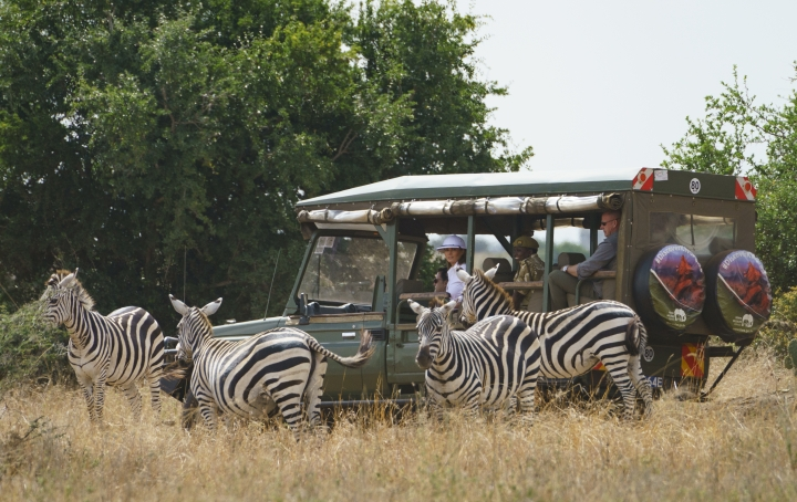 First lady Melania Trump observes zebras during a safari at Nairobi National Park in Nairobi, Kenya, Friday, Oct. 5, 2018. Mrs. Trump is visiting Africa on her first big solo international trip, aiming to make child well-being the focus of a five-day, four-country tour. (AP Photo/Carolyn Kaster)