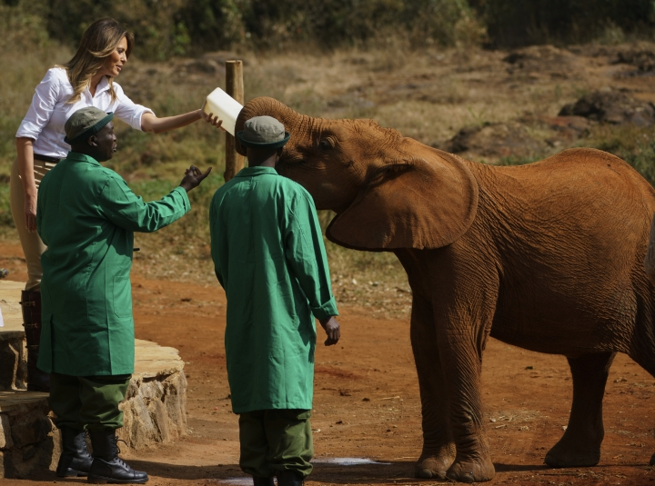 First lady Melania Trump feeds a baby elephant at David Sheldrick Elephant & Rhino Orphanage at Nairobi National Park in Nairobi, Kenya, Friday, Oct. 5, 2018. Melania Trump has fed baby elephants as she visits a national park in Kenya to highlight conservation efforts. The U.S. first lady also went on a quick safari. Mrs. Trump is on her first-ever visit to Africa and her first extended solo international trip as first lady. (AP Photo/Carolyn Kaster)
