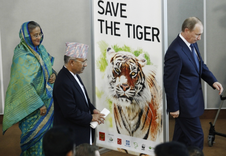 FILE- In this Nov. 23, 2010 file photo, Russian Prime Minister Vladimir Putin, right, the then Prime Minister of Nepal Madhav Kumar, center, and, Prime Minister of Bangladesh Sheikh Hasina attend the International Tiger Forum in St.Petersburg, Russia. The number of tigers roaming the jungles of Nepal has nearly doubled because of initiatives from the government, conservationists and local authorities who have worked for years to increase the tiger population in the Himalayan nation, an official said Sunday. (AP Photo/Dmitry Lovetsky, File)