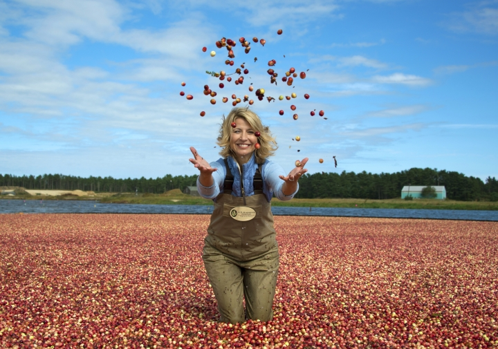 "This image released by PBS/BBC shows co-host Samantha Brown in a cranberry bog in Wareham, Mass. to promote the three-night public TV series, ""AutumnWatch New England,"" The series will showcase the season's glories, including the great outdoors, food and fall traditions. (PBS/BBC via AP)"
