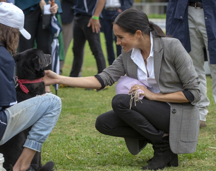 Meghan, Duchess of Sussex pats a dog during a visit to a community picnic at Victoria Park in Dubbo, Australia, Wednesday, Oct. 17, 2018. Prince Harry and his wife Meghan are on day two of their 16-day tour of Australia and the South Pacific. (Ian Vogler/Pool via AP)