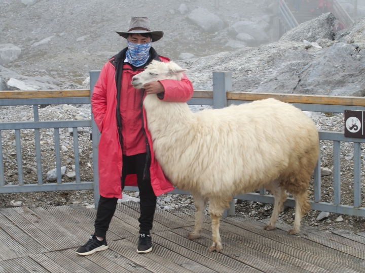 This Sept. 21, 2018 photo shows a tourist posing with a yak atop the Baishui Glacier No.1 on the Jade Dragon Snow Mountain in the southern province of Yunnan in China. About 2.6 million visitors come every year to see the glacier which scientists say is one of the fastest melting glaciers in the world due to climate change and its relative proximity to the Equator. (AP Photo/Sam McNeil)