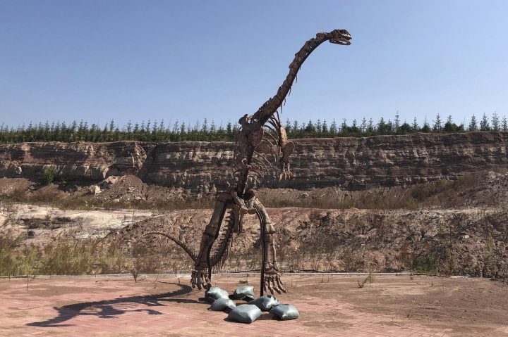 In this Sept. 12, 2018, photo, a dinosaur model stands near the site of a future dinosaur museum in Yanji, China. Paleontologist Xu Xing opened a dig site in Yanji after construction crews erecting new apartment buildings accidentally uncovered dinosaur bones and other fossils, dating back 100 million years. (AP Photo/Christina Larson)