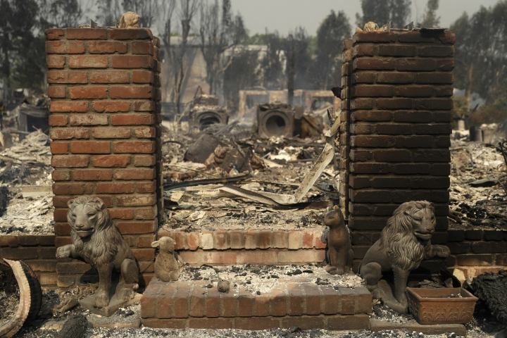 Lion statues guard the entrance of a wildfire ravaged home Saturday, Nov. 10, 2018, in Malibu, Calif. (AP Photo/Marcio Jose Sanchez)