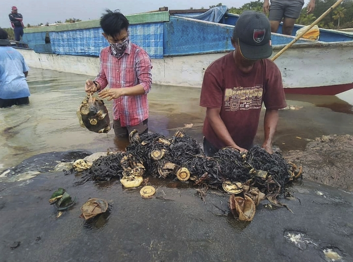 In this undated photo released by Akademi Komunitas Kelautan dan Perikanan Wakatobi (Wakatobi Marine and Fisheries Community Academy or AKKP Wakatobi), researchers remove plastic waste from the stomach of a beached whale at Wakatobi National Park in Southeast Sulawesi, Indonesia. The dead whale that washed ashore in eastern Indonesia had a large lump of plastic waste in its stomach, including drinking cups and flip-flops, a park official said Tuesday, causing concern among environmentalists and government officials in one of the world's largest plastic polluting countries. (Muhammad Irpan Sejati Tassakka, AKKP Wakatobi via AP)