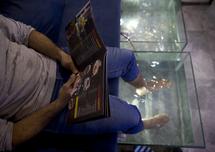 In this Wednesday, Dec. 26, 2018 photo, a man soaks his feet in tank stocked with fish while looking at a menu at a hookah bar and cafe in Gaza City. The Gaza cafe operator said his business is booming after launching the fish pedicure service in the beleaguered Gaza Strip. A 30-minute session costs about $8 -- a hefty sum in the impoverished coastal enclave. But dozens of people are willing to pay the price for a temporary escape from the difficult living conditions in Gaza. (AP Photo/Khalil Hamra)