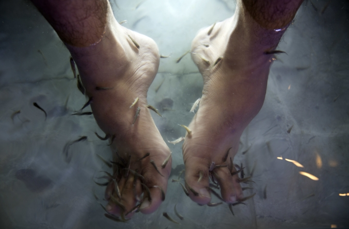 In this Wednesday, Dec. 26, 2018 photo, a man soaks his feet in tank stocked with fish at a hookah bar and cafe in Gaza City. The Gaza cafe operator said his business is booming after launching the fish pedicure service in the beleaguered Gaza Strip. A 30-minute session costs about $8 -- a hefty sum in the impoverished coastal enclave. But dozens of people are willing to pay the price for a temporary escape from the difficult living conditions in Gaza. (AP Photo/Khalil Hamra)