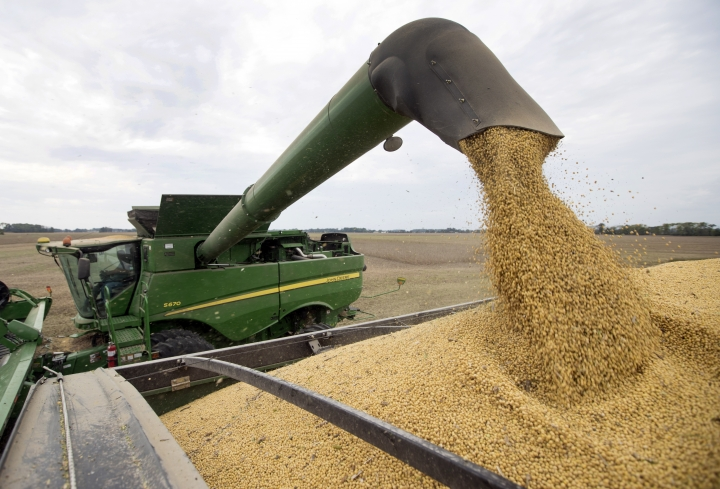 FILE - In this Friday, Sept. 21, 2018, file photo, soybeans are offloaded from a combine during the harvest in Brownsburg, Ind. China's government says American envoys will visit Beijing on Monday for talks over a tariff fight that threatens to hobble global economic growth. (AP Photo/Michael Conroy, File)