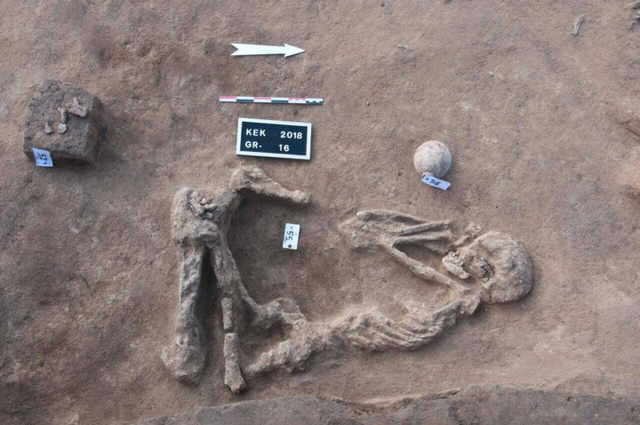 This undated handout photo provided by the Egyptian Antiquities Authority, shows a skeleton, at the Kom al-Kholgan archaeological site, about 140 kilometers (87 miles) north of Cairo, Egypt. The Antiquities Ministry said Wednesday, Jan. 23, 2019 that archaeologists have uncovered ancient tombs dating back to the Second Intermediate Period, 1782-1570 B.C., in the Nile Delta. (Egyptian Antiquities Authority via AP)