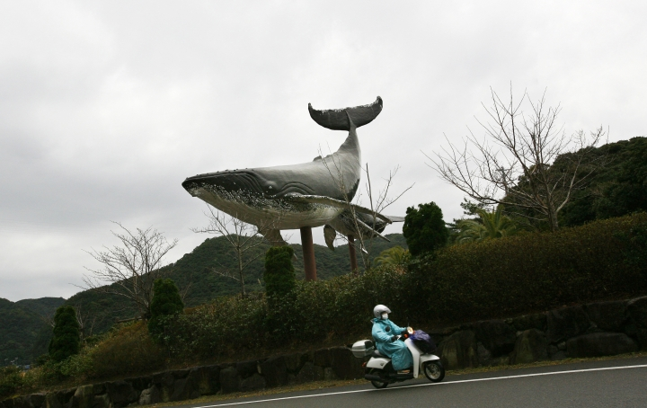 FILE - In this Jan. 29, 2008, file photo, a motorist rides past a statue of a whale at the entrance to the town of Taiji, Japan. Japanese whalers are discussing plans ahead of their July 1, 2019 resumption of commercial hunting along the northeastern coasts for the first time in three decades. (AP Photo/Junji Kurokawa, File)