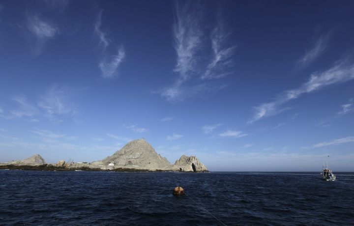 FILE - This Oct. 13, 2011, file photo shows the Southeast Farallon Island at Farallon Islands National Refuge, Calif. Environmental research projects on everything from endangered animals to air and water quality are being delayed and disrupted by the month-long partial federal government shutdown _ and not just those conducted by government agencies. Scientists with universities, nonprofit organizations and private companies say their inability to collaborate with federal partners, gain access to federal lands and laboratories, and secure federal funding is jeopardizing their work. (AP Photo/Eric Risberg, file)