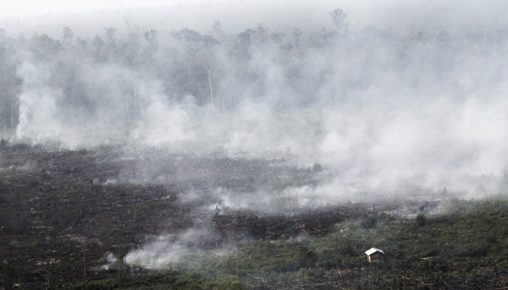 FILE - In this June 27, 2013, file photo, smoke billows during a forest fires in Pelalawan, Riau province, Indonesia. Indonesia's air quality has deteriorated from among the cleanest in the world to one of the most polluted over the past two decades, shaving five years from life expectancy in some regions, researchers say. (AP Photo/Rony Muharrman, File)