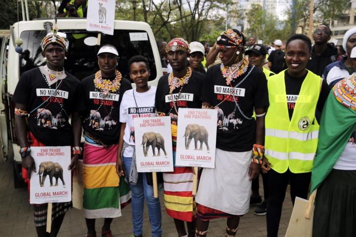Demonstrators walk through the streets of Nairobi, in Kenya Saturday, April 13, 2019. Demonstrators walked through the streets of Nairobi to participate in a Global March to support wildlife Elephants and Rhinos. Kenya is a leading wildlife safari destination that has been grappling with declining wildlife numbers.(AP Photo/Khalil Senosi)
