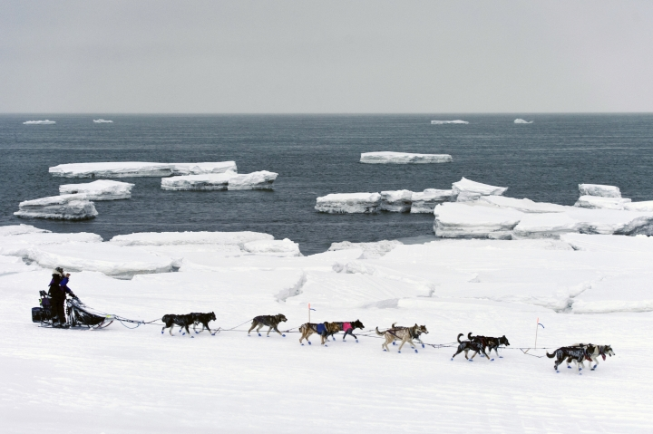 FILE - In this March 13, 2019, file photo, Jessie Royer passes icebergs in open water on Norton Sound as she approaches Nome, Alaska, in the Iditarod trail sled dog race. When a Feb. 22 storm pounded Norton Sound, water surged up the Yukon River and into Kotlik, flooding low-lying homes. The Bering Sea last winter saw record-low sea ice. Climate models predicted less ice, but not this soon, said Seth Danielson, a physical oceanographer at the University of Alaska Fairbanks. (Marc Lester/Anchorage Daily News via AP, File)