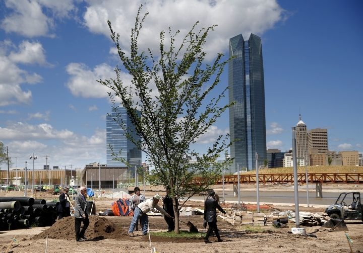 Dignitaries put dirt on a Survivor Tree clone after it was transplanted on the grounds Scissortail Park in Oklahoma City, Friday, April 19, 2019. The Survivor Tree is the 110-year-old American Elm that survived the 1995 bombing of Alfred P. Murrah Federal Building in Oklahoma City. (Sarah Phipps/The Oklahoman via AP)