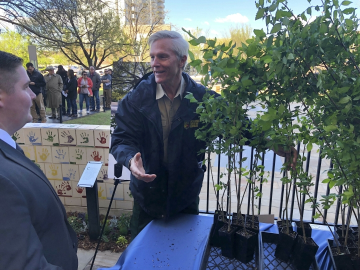 """Mark Bays, right, a forester with Oklahoma Forestry Services, greets a man who waited in line to get an American elm sapling Friday, April 19, 2019. In Oklahoma City. The tree grew out of a seed from the """"Survivor Tree"""" that is a symbol of hope after the deadly 1995 Oklahoma City bombing. Science and technology are helping Oklahoma City to sustain the DNA of a tree symbolizing hope 24 years after the deadliest act of domestic terrorism on U.S. soil. As part of an annual remembrance of the bombing, civic leaders on Friday plan to transplant a tree that was cloned from a scarred American elm that lived through the blast. They hope the younger elm will replace the nearly 100-year-old """"Survivor Tree"""" once it dies. (AP Photo/Adam Kealoha Causey)"""