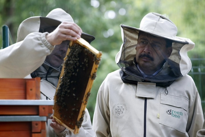 Hungarian President Janos Ader, right, wearing a beekeeper hat gets to know the biomonitoring system for bee life at the University of Sopron, where he delivered a lecture on climate change in Sopron, 210 kms west of Budapest, Hungary, Tuesday, May 7, 2019. (Szilard Koszticsak/MTI via AP)