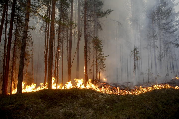 In this Sunday, July 15, 2018, file photo a wildfire burns in Karbole, outside Ljusdal, Sweden. In 2018, Sweden experienced a heat wave that led to forest fires unprecedented in modern history, driving home the possible consequences of global warming for this rich Nordic nation. (Mats Andersson/TT News Agency via AP)