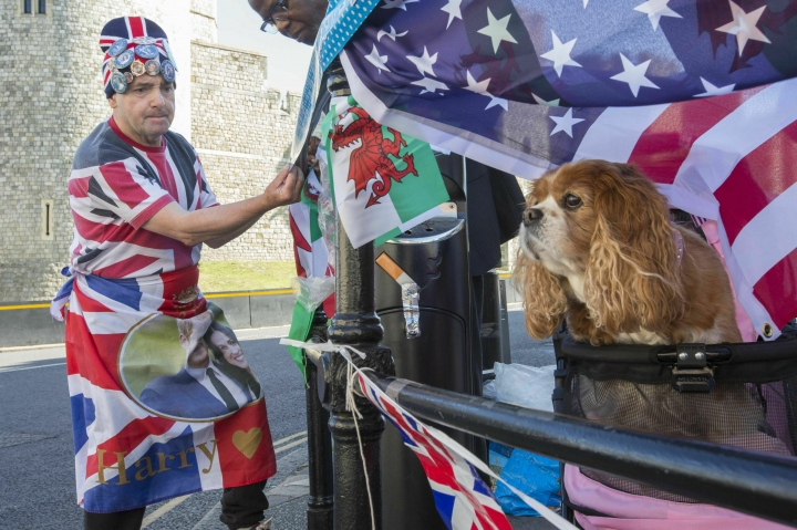 Royal superfan John Loughrey, with company from Camilla the dog, prepares flags and posters in celebration of the royal christening of Archie, the son of Britain's Prince Harry and Meghan, Duchess of Sussex, outside Windsor Castle in England, Saturday, July 6, 2019. The 2-month-old son of the Duke and Duchess of Sussex will be baptized Saturday in a private chapel at the castle by Archbishop of Canterbury Justin Welby, head of the Church of England. (Rick Findler/PA via AP)