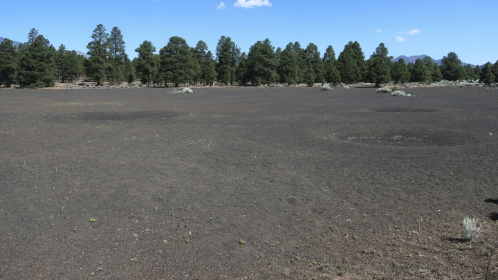 This June 28, 2019 photo shows a fenced-off field of craters in a volcanic cinder field east of Flagstaff, Ariz., that was used as a training site for astronauts who landed on the moon. (AP Photo/Felicia Fonseca)
