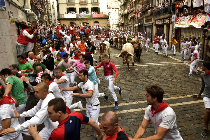 Revellers run next to fighting bulls from Cebada Gago ranch, during the running of the bulls at the San Fermin Festival, in Pamplona, northern Spain, Monday, July 8, 2019. Revellers from around the world flock to Pamplona every year to take part in the eight days of the running of the bulls. Authorities say four runners were being treated after one was gored and the rest knocked over or fell during the second day of bull races at Spain's annual San Fermin festival. (AP Photo/Alvaro Barrientos)