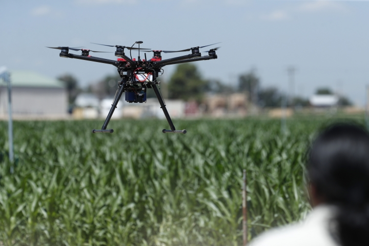 In this Thursday, July 11, 2019, photograph, United States Department of Agriculture engineering technician Kevin Yemoto guides a drone into the air at a research farm northeast of Greeley, Colo. Researchers are using drones carrying imaging cameras over the fields in conjunction with stationary sensors connected to the internet to chart the growth of crops in an effort to integrate new technology into the age-old skill of farming. (AP Photo/David Zalubowski)